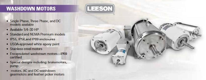 LEESON Washdown Duty Motors
